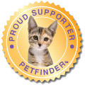 Cat-Adoptions-Auburn-Adopt-A-Pet